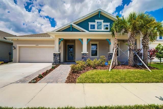 16701 Vibrato Lane, Land O Lakes, FL 34638 (MLS #T3303359) :: Team Borham at Keller Williams Realty