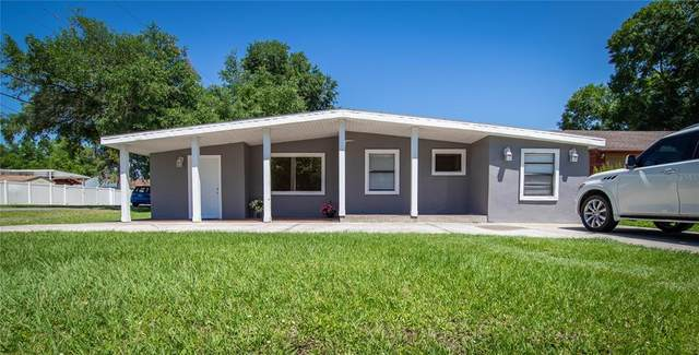 8213 N Thatcher Avenue, Tampa, FL 33614 (MLS #T3303387) :: Armel Real Estate