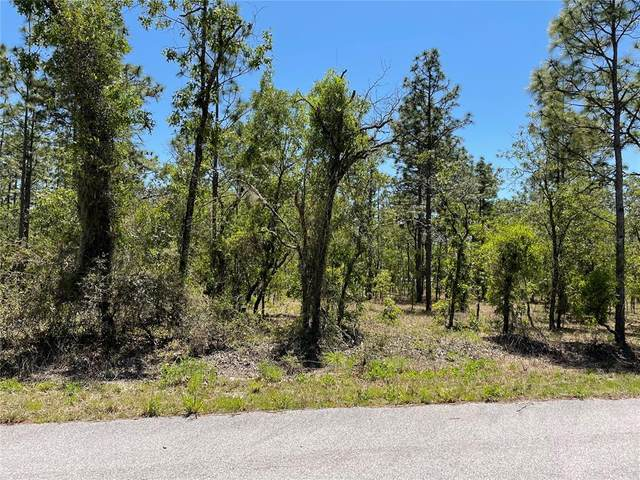 000 SW Commodore Road, Dunnellon, FL 34431 (MLS #T3303389) :: The Robertson Real Estate Group