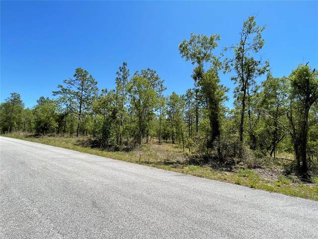 000 NW Tamarind Lane, Dunnellon, FL 34431 (MLS #T3303392) :: The Robertson Real Estate Group