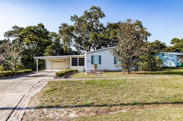 37635 Newal Avenue, Zephyrhills, FL 33542 (MLS #T3303420) :: New Home Partners