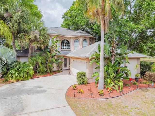 724 Crestridge Drive, Tarpon Springs, FL 34688 (MLS #T3303423) :: Team Borham at Keller Williams Realty