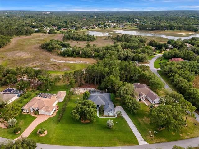 9491 Tooke Shore Drive, Weeki Wachee, FL 34613 (MLS #T3303623) :: Bustamante Real Estate