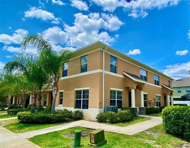 9820 Trumpet Vine Loop, Trinity, FL 34655 (MLS #T3303634) :: Premier Home Experts