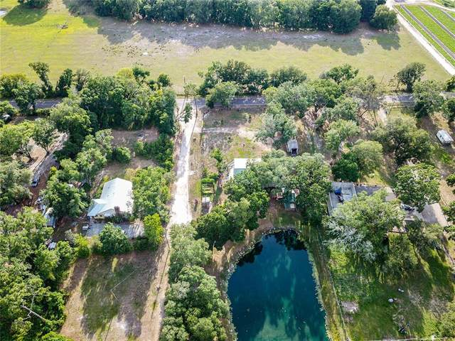 4002 Gallagher Road, Plant City, FL 33565 (MLS #T3303643) :: Griffin Group