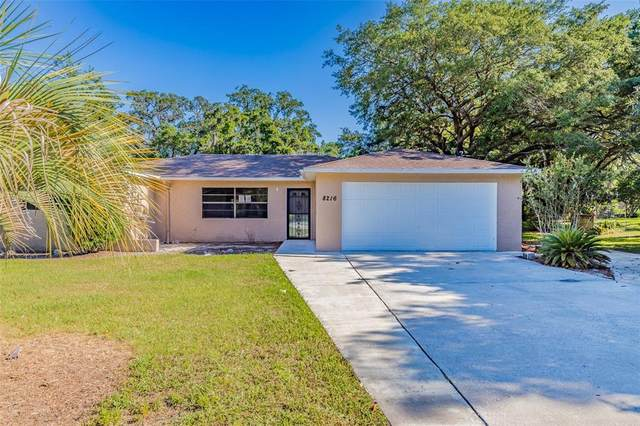 8216 Shorecrest Court, Spring Hill, FL 34606 (MLS #T3303691) :: Zarghami Group