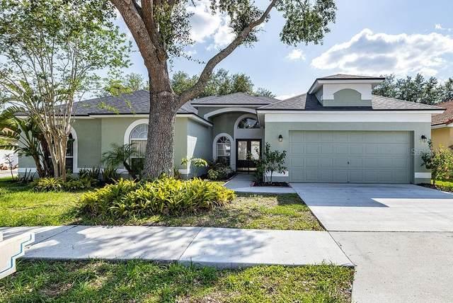 919 Tuscanny Street, Brandon, FL 33511 (MLS #T3303696) :: Delgado Home Team at Keller Williams