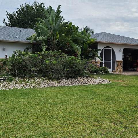 164 SE 21ST Lane, Cape Coral, FL 33990 (MLS #T3304008) :: Armel Real Estate
