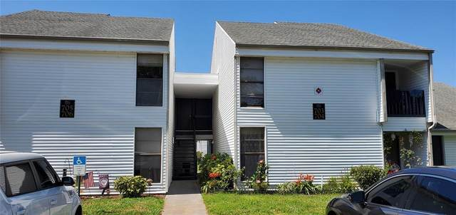 705 Haven Place #705, Tarpon Springs, FL 34689 (MLS #T3304035) :: Armel Real Estate