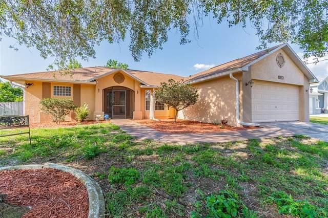 5971 Lyon Road, Spring Hill, FL 34606 (MLS #T3304079) :: RE/MAX Local Expert