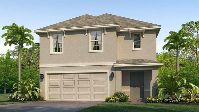 4911 Granite Dust Place, Palmetto, FL 34221 (MLS #T3304153) :: Positive Edge Real Estate