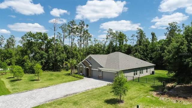 1111 Lake Hanna Drive, Lutz, FL 33549 (MLS #T3304163) :: Premier Home Experts