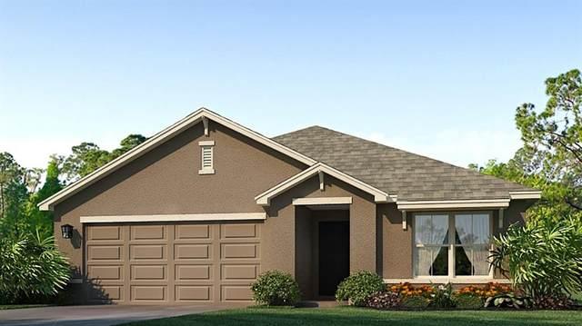 5120 Granite Dust Place, Palmetto, FL 34221 (MLS #T3304165) :: Positive Edge Real Estate