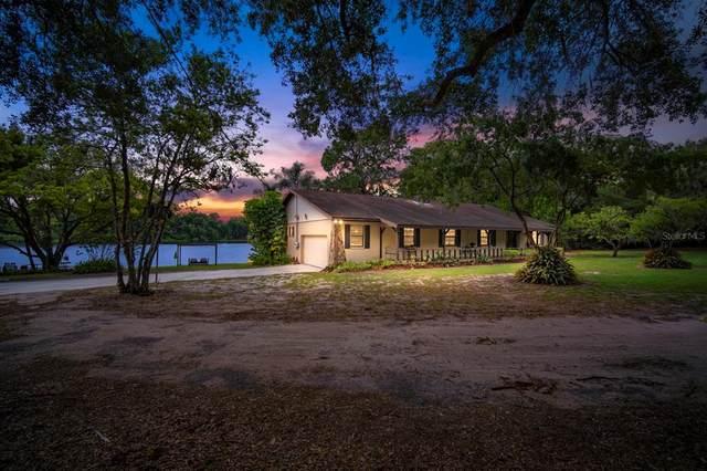 201 Gornto Lake Road, Brandon, FL 33510 (MLS #T3304166) :: Delgado Home Team at Keller Williams