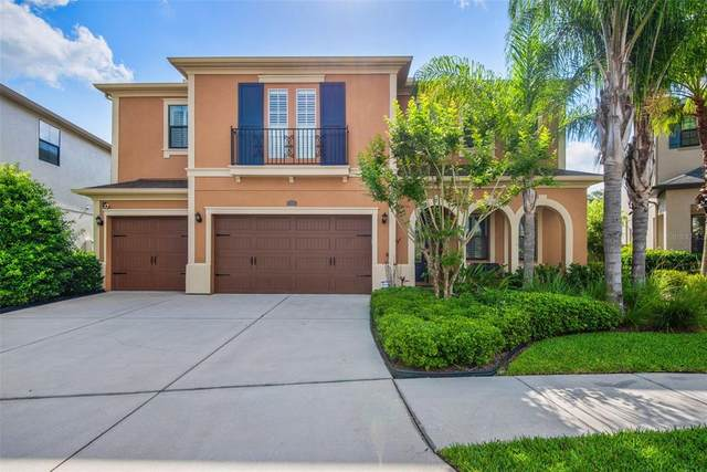 14239 Avon Farms Drive, Tampa, FL 33618 (MLS #T3304198) :: Heckler Realty