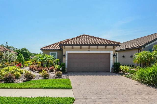 20113 Sorano Hill Place, Tampa, FL 33647 (MLS #T3304209) :: Team Bohannon Keller Williams, Tampa Properties