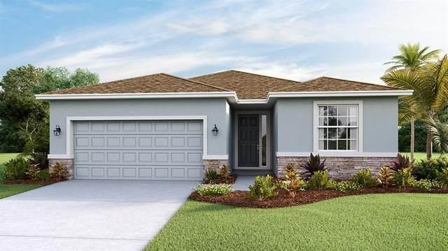 5323 Granite Dust Place, Palmetto, FL 34221 (MLS #T3304224) :: Positive Edge Real Estate