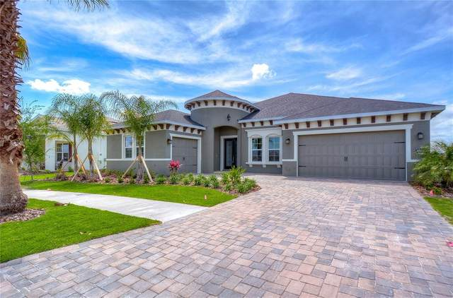 12315 Nora Grant Place, Riverview, FL 33579 (MLS #T3304227) :: The Brenda Wade Team