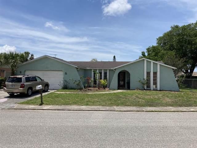 9735 Shamokin Lane, Port Richey, FL 34668 (MLS #T3304235) :: EXIT King Realty