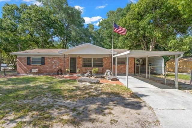 6501 N 12TH Street, Tampa, FL 33604 (MLS #T3304268) :: Premier Home Experts