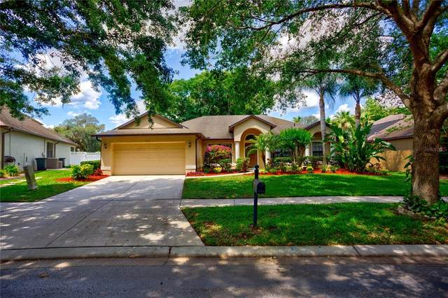 1910 Abbey Trace Drive, Dover, FL 33527 (MLS #T3304337) :: Team Borham at Keller Williams Realty