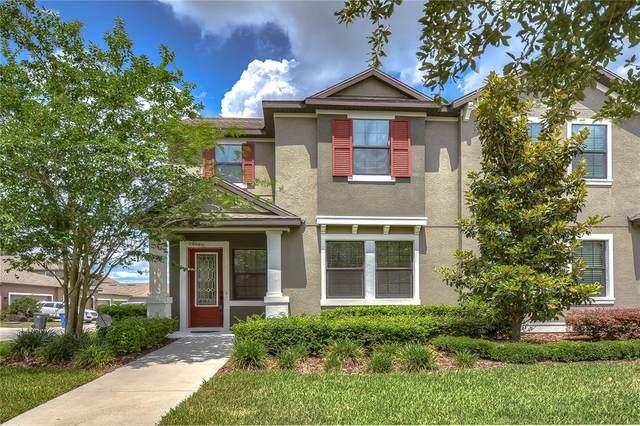 5720 Circa Fishhawk Boulevard, Lithia, FL 33547 (MLS #T3304352) :: Armel Real Estate