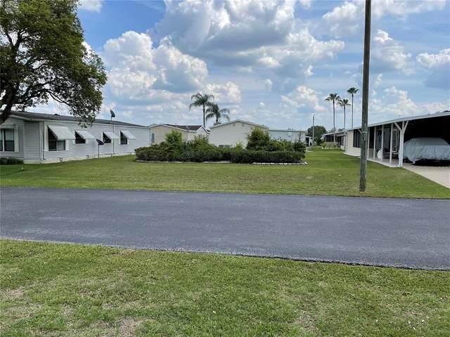 Tara Ave, Zephyrhills, FL 33542 (MLS #T3304412) :: Team Borham at Keller Williams Realty