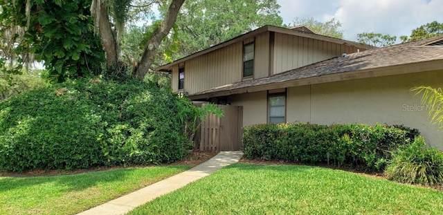3214 Doe Court, Brandon, FL 33511 (MLS #T3304428) :: Rabell Realty Group