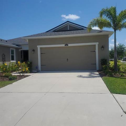 10320 Planer Picket Drive, Riverview, FL 33569 (MLS #T3304454) :: Realty One Group Skyline / The Rose Team