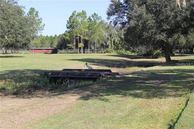 7031 Whitney Ashton Lane, Wesley Chapel, FL 33545 (MLS #T3304487) :: Team Borham at Keller Williams Realty