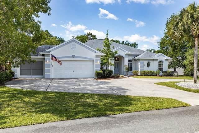 3 Hackberry Court S, Homosassa, FL 34446 (MLS #T3304501) :: Armel Real Estate