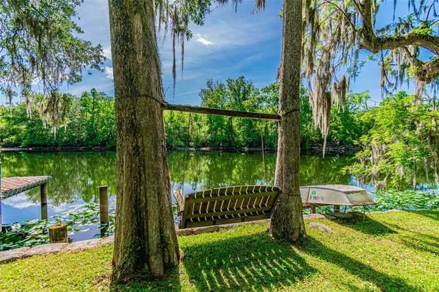 1601 N Riverhills Drive, Temple Terrace, FL 33617 (MLS #T3304504) :: Team Borham at Keller Williams Realty