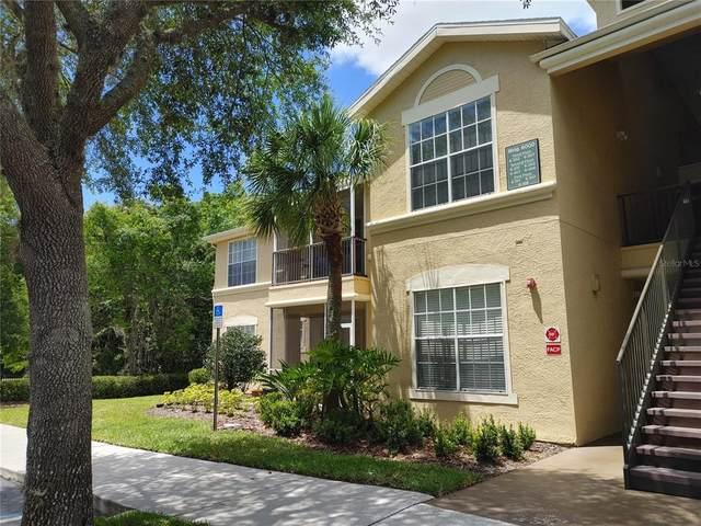 5125 Palm Springs Boulevard #6101, Tampa, FL 33647 (MLS #T3304514) :: Visionary Properties Inc