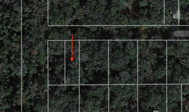 939 Estelle Avenue, Brandon, FL 33511 (MLS #T3304538) :: The Robertson Real Estate Group