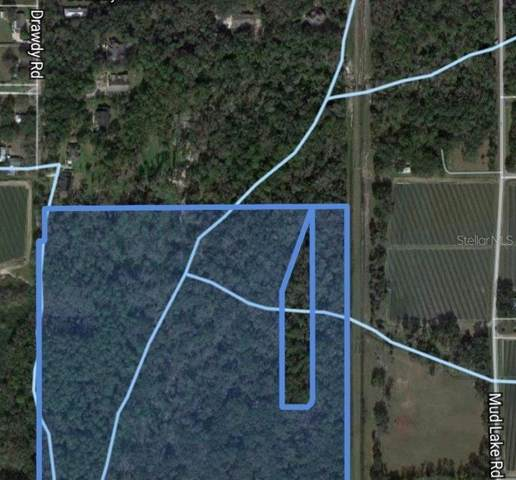 80 Drawdy Road, Plant City, FL 33567 (MLS #T3304556) :: Gate Arty & the Group - Keller Williams Realty Smart