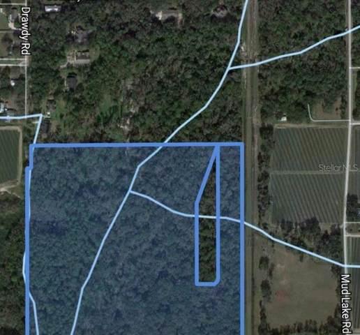 80 Drawdy Road, Plant City, FL 33567 (MLS #T3304556) :: Premier Home Experts