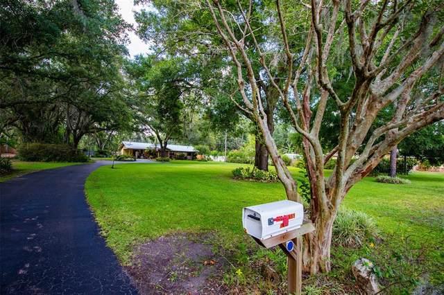 1408 E Spencer Street, Plant City, FL 33563 (MLS #T3304591) :: Dalton Wade Real Estate Group