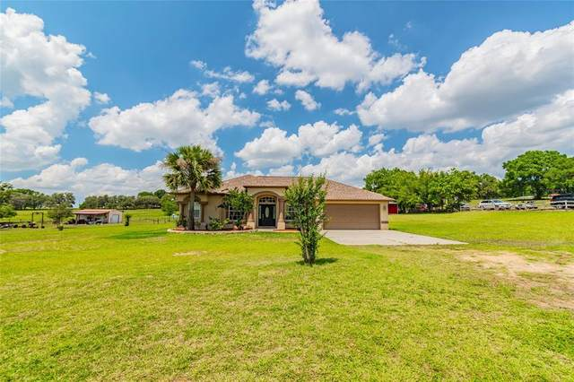 36713 Christian Road, Dade City, FL 33523 (MLS #T3304610) :: GO Realty