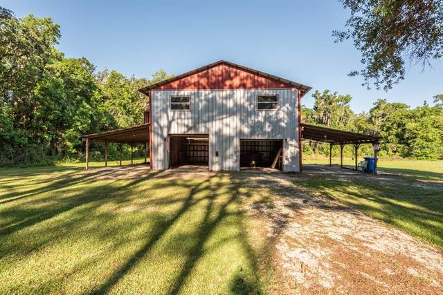4539 Jean Road, Valrico, FL 33596 (MLS #T3304619) :: Team Borham at Keller Williams Realty
