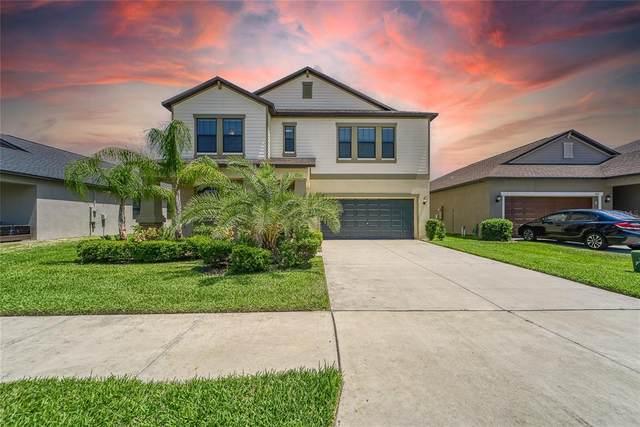 11013 Little Blue Heron Drive, Riverview, FL 33579 (MLS #T3304631) :: Pepine Realty