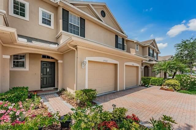 27008 Cool Stream Lane, Wesley Chapel, FL 33544 (MLS #T3304644) :: Aybar Homes