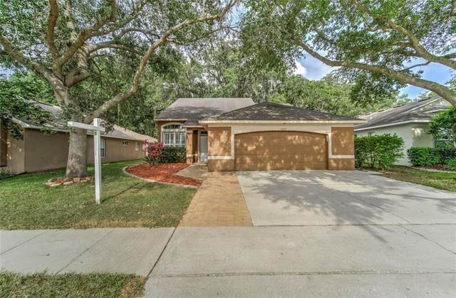 3207 Beaver Pond Trail, Valrico, FL 33596 (MLS #T3304650) :: Delgado Home Team at Keller Williams