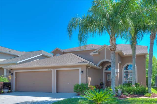 3540 Morgans Bluff Court, Land O Lakes, FL 34639 (MLS #T3304662) :: Pepine Realty