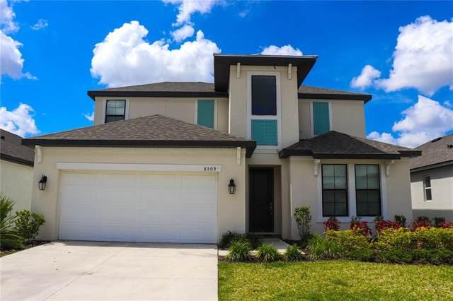 8509 Cache Drive, Sarasota, FL 34240 (MLS #T3304666) :: Godwin Realty Group
