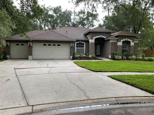 12504 River Birch Drive, Riverview, FL 33569 (MLS #T3304679) :: EXIT King Realty