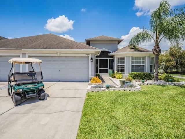 29641 Fade Court, San Antonio, FL 33576 (MLS #T3304682) :: Memory Hopkins Real Estate
