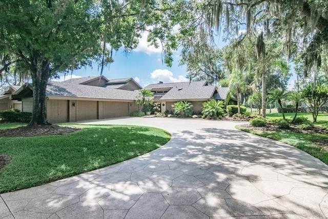 29922 Baywood Lane, Wesley Chapel, FL 33543 (MLS #T3304713) :: Team Borham at Keller Williams Realty