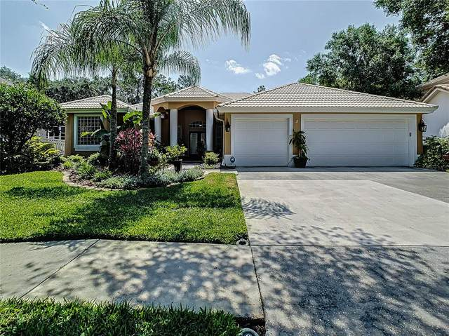 18115 Regents Square Drive, Tampa, FL 33647 (MLS #T3304719) :: Team Bohannon Keller Williams, Tampa Properties