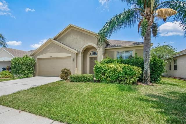 1816 Loch Haven Court, Trinity, FL 34655 (MLS #T3304721) :: Premier Home Experts