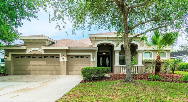 6615 Thornton Palms Drive, Tampa, FL 33647 (MLS #T3304724) :: Team Bohannon Keller Williams, Tampa Properties
